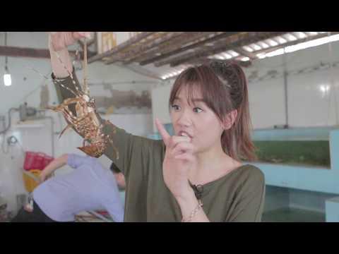 Hari Won - Siêu Ham Ăn - Hải Sản Bibo (Phan Thiết) (Korean/English/VN Subtitles) - Thời lượng: 19:44.