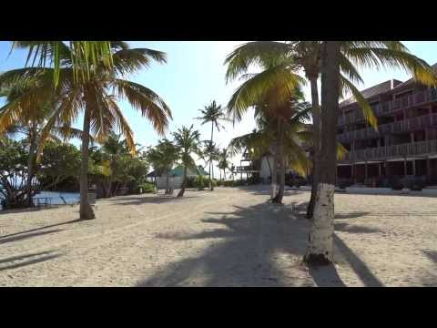 Sapphire Beach Resort Grounds St Thomas USVI