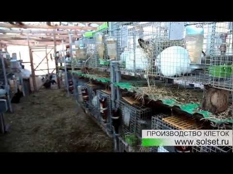 Чертежи кормушка для кроликов своими руками