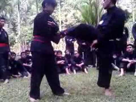 Teknik Bantingan Pencak Silat oleh Pelatih PPS – Satria Muda Indonesia… #SalamSATRIA