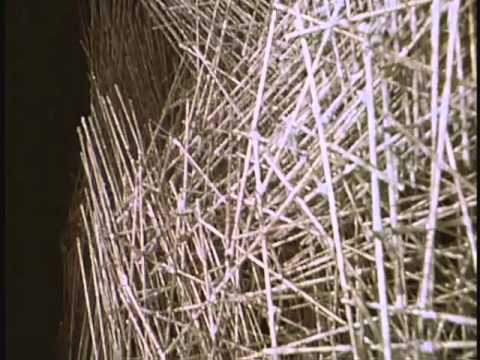 DOC- Harry Bertoia's Sculpture (1965)