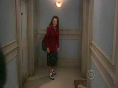Seinfeld Elaine on New Adventures of Old Christine