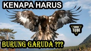 Video Mengapa Garuda Dijadikan Lambang Negara Indonesia ??? MP3, 3GP, MP4, WEBM, AVI, FLV September 2018