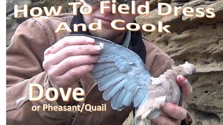 How to Field Dress and Campfire Cook a DOVE
