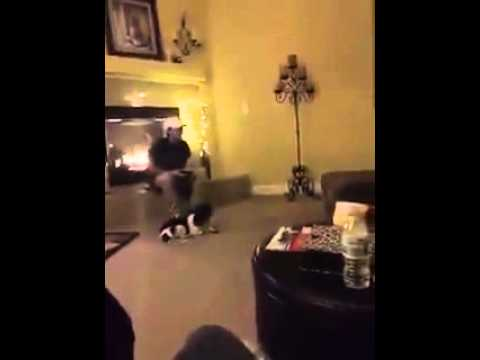 Mom makes son come home at bad time