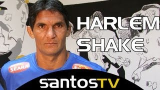 O povo pediu e a Santos TV realizou! Confira a versão de Harlem Shake do Santos Futebol Clube! Check it out the best harlem...