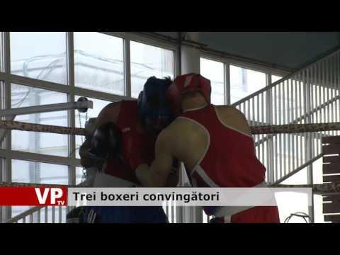 Trei boxeri convingători
