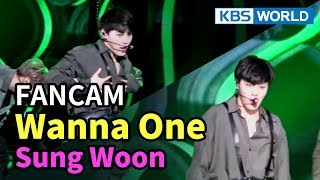 [FOCUSED] Wanna One's Ha Sungwoon - Boomerang [Music Bank / 2018.04.06]