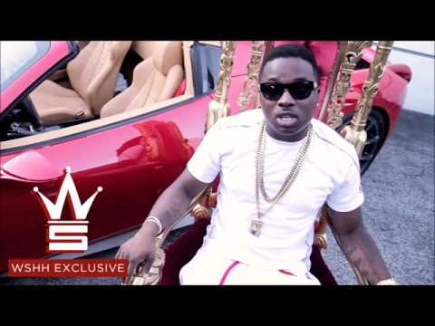 Troy Ave - Sex Tape [NEW SONG]