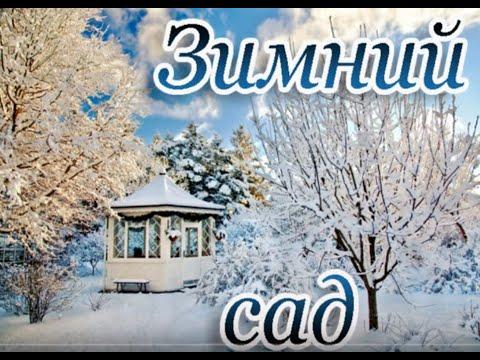 Зимний сад(караоке)