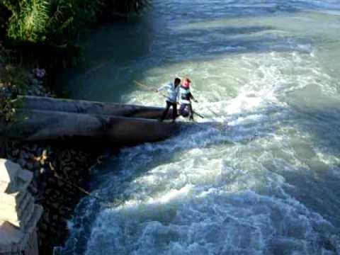 ловля рыбы в амударье