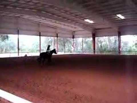 Horse riding Florida 2007