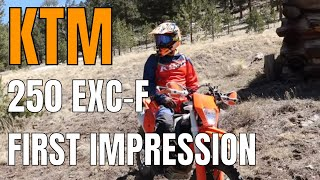 3. First Impressions of the KTM 250 EXC-F dirtbike | is the KTM EXC-F a good dirtbike?