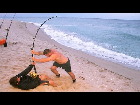 fisherman - It's not everyday that you hook a giant shark like the one in this video. This shark was extremely strong! We used a cobia carcass for bait and within 15 min...