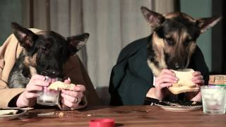 Two Dogs Try To Have Dinner Together :))