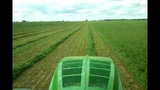 Hay Australia  city photos : John Deere 7260R and MOCO cutting vetch hay in australia