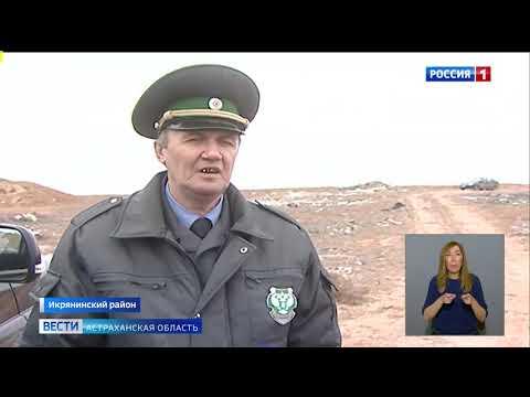 Управлением Россельхознадзора на территории Астраханской области выявлена свалка твердых коммунальных отходов