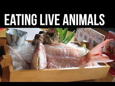 吃掉時心還在跳..人類生吞的6種動物