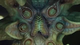 Nonton Alien Vs Alien Prometheus 2012 Hindi Hd Film Subtitle Indonesia Streaming Movie Download