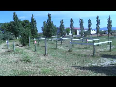 Campeonato Navarro de Enganches 240618 Video 1
