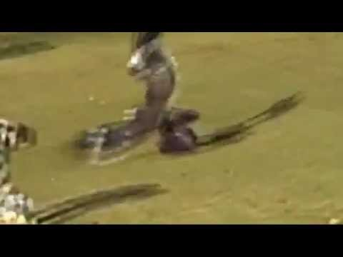 Golden Eagle Snatches Kid - Fake ؟؟؟ OR NOT !!!