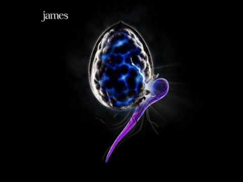 Tekst piosenki James - Shine po polsku