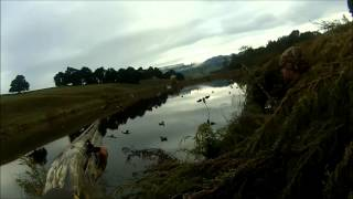 Huntly New Zealand  city pictures gallery : Duck Shooting with the Huntly Crew in New Zealand nz