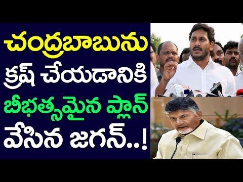 AP CM YS Jagan Plan on Chandrababu, Andhra Pradesh, TDP YCP
