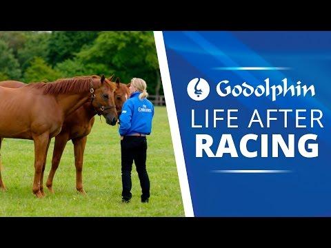 Élet a lóverseny után