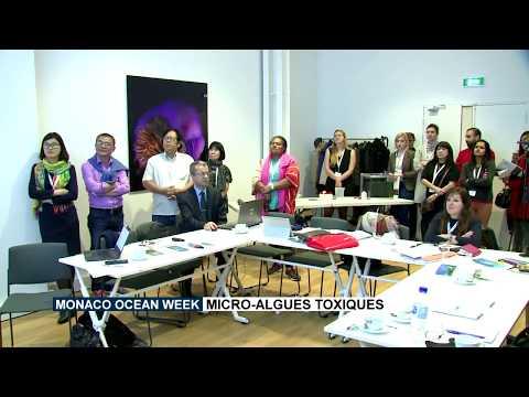 Monaco Ocean Week : Micro-algues toxiques