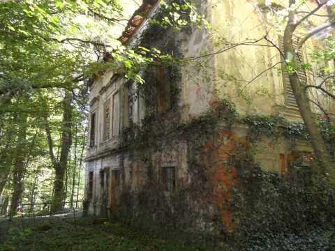 dvorec MATZENAU
