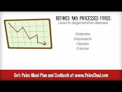 What is the Paleo Diet? Paleolithic Diet Basics for Beginners | Caveman Diet Review