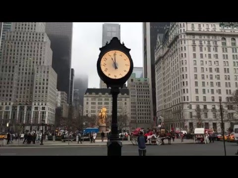 A Clock in Central Park - Hands Move Forward