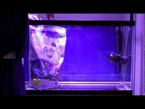 Setting Up 30 Gallon Saltwater Aquarium