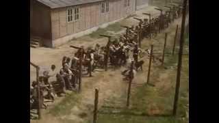 Nonton Escape From Sobibor  Escape Scene  Film Subtitle Indonesia Streaming Movie Download