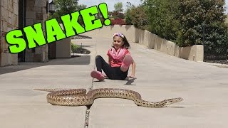 LITTLE GIRL PLAYS WITH WILD SNAKE!!!