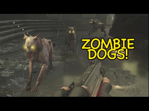 THESE DOGS RUTHLESS! [EXO ZOMBIES] [ADVANCED WARFARE]