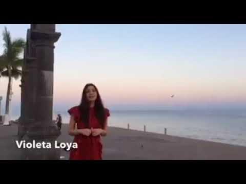 Poemas cortos - La joven que dedica un poema a Puerto Vallarta