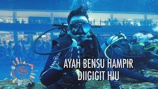Video The Onsu Family - Ayah Bensu hampir di Gigit Ikan Hiu MP3, 3GP, MP4, WEBM, AVI, FLV Januari 2019