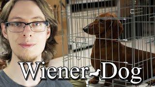 Nonton Wiener Dog   Movie Review Film Subtitle Indonesia Streaming Movie Download