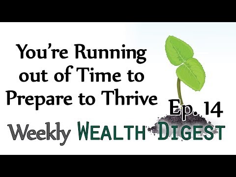 You're Running out of Time to Prepare to Thrive – WWD Ep. 14 (Weekly Wealth Digest)