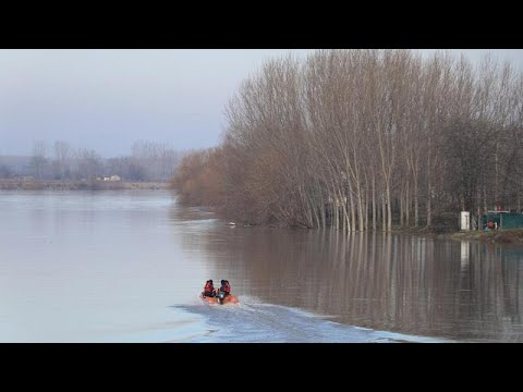Δραματική έκκληση του πατέρα των παιδιών που χάθηκαν στον Έβρο (βίντεο)…