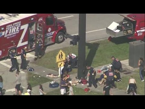 One dead, more than 20 injured in mass shooting at Florida high school