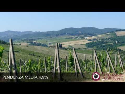 Granfondo del Gallo Nero - Da Greti a Spedaluzzo