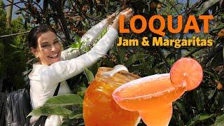 Video Jam & Margaritas with local Los Angeles Loquats MP3, 3GP, MP4, WEBM, AVI, FLV Mei 2019