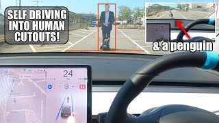 Will Tesla Autopilot STOP or CRASH Jeremy Clarkson & a Penguin? | FSD HW3 Human & Animal Testing by Pokemon Cards