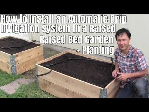 How to Install a Automatic Drip Irrigation System in a Raised Bed Garden (видео)