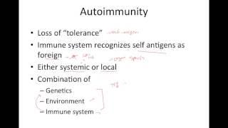 Immune System Abnormalities
