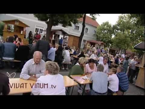 Rotweinfestival Deutschkreutz - Weinort Traiskirchen mit Ankndigung des Weinfestes vom 30. Juni bis 14. Juli - Rotweinfestival in Deutschkreutz vom 8. -11. Juli - Kurzbesuch auf der Vie ...