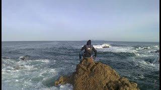 改造ダイソージグでイナダ・ワラサ釣り